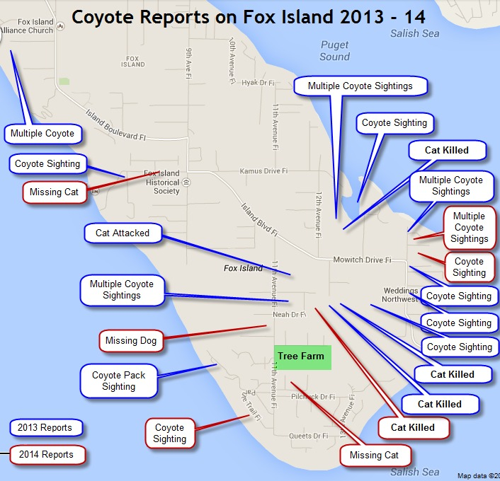 Coyote Report Map of Fox Island