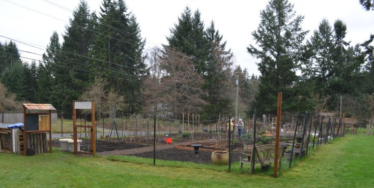 The Fox Island Community Garden
